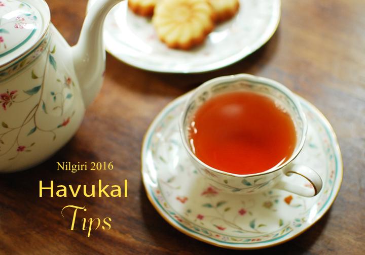 ニルギリ2016年ハブカル茶園Tips