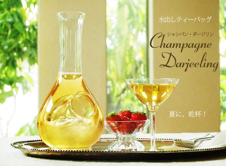 水出しティーバッグ・シャンパン・ダージリン